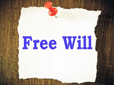 Free Will written on pinned notepaper